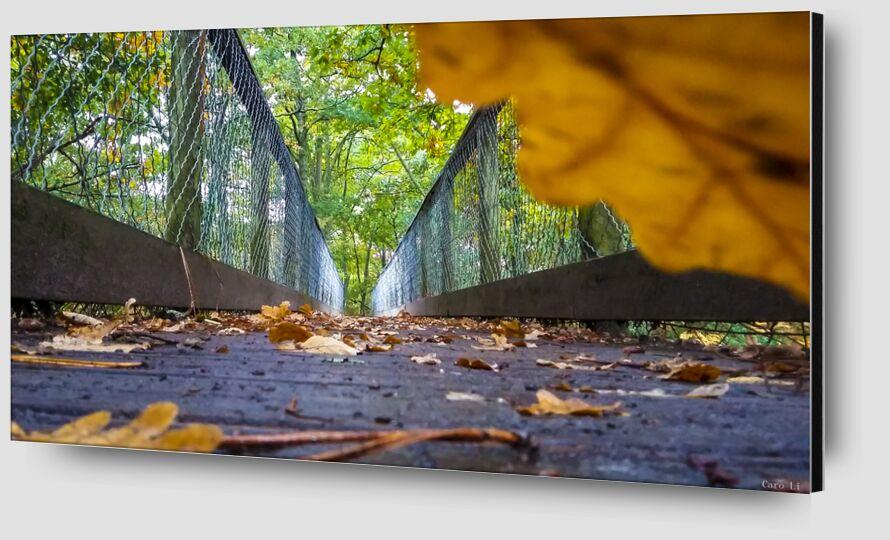 The Way de Caro Li Zoom Alu Dibond Image