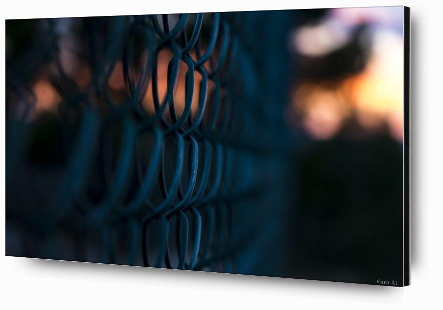Enclosed from Caro Li, Prodi Art, enclosed, sunset, sunset