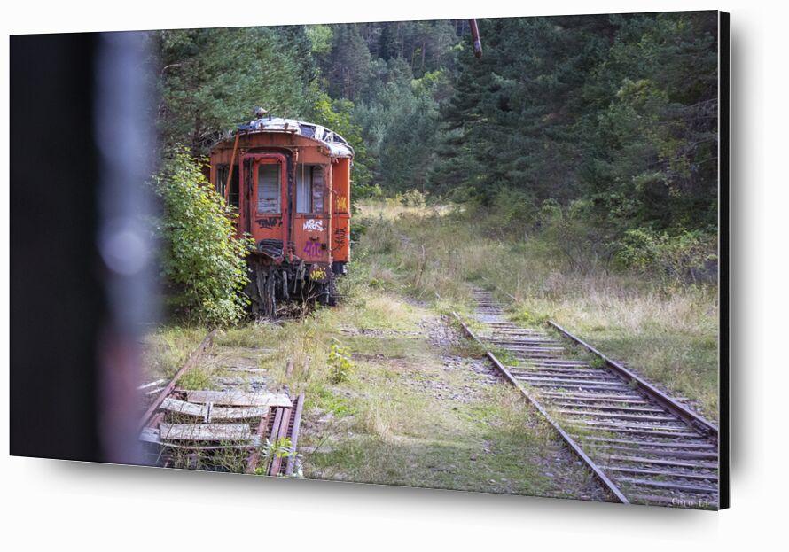 Train de Caro Li, Prodi Art, Urbex, train