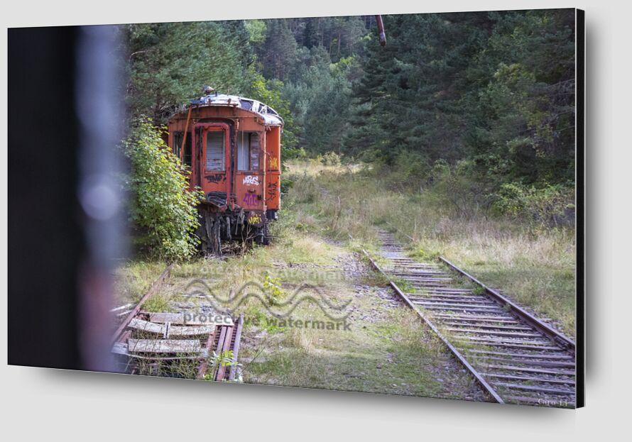 Train de Caro Li Zoom Alu Dibond Image
