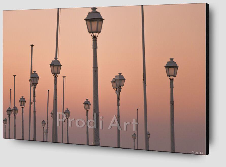Lights de Caro Li Zoom Alu Dibond Image