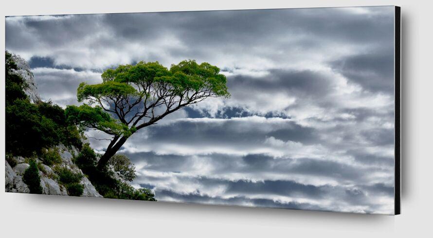 La tête dans les nuages de Frédéric Traversari Zoom Alu Dibond Image