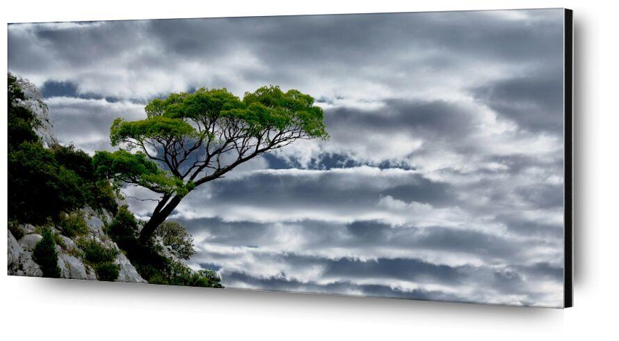 La tête dans les nuages de Frédéric Traversari, Prodi Art, ciel, nature, provence, Paysages