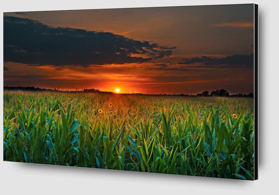 Crépuscule de Aliss ART Zoom Alu Dibond Image