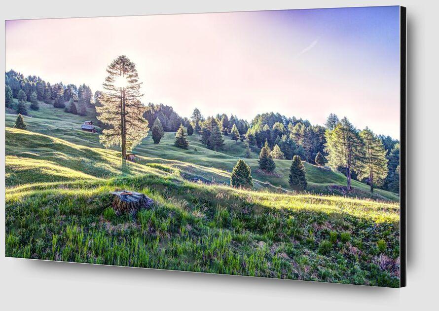 Day light from Aliss ART Zoom Alu Dibond Image