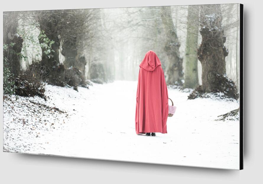 Promenade dans le bois de Eric-Anne Jordan-Wauthier Zoom Alu Dibond Image