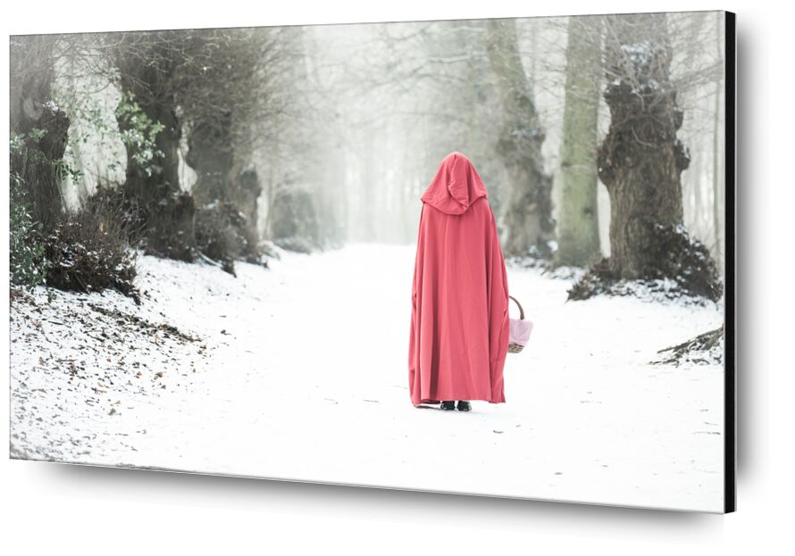 Promenade dans le bois from Eric-Anne Jordan-Wauthier, Prodi Art, portrait, Red Riding Hood, E Photography, High key