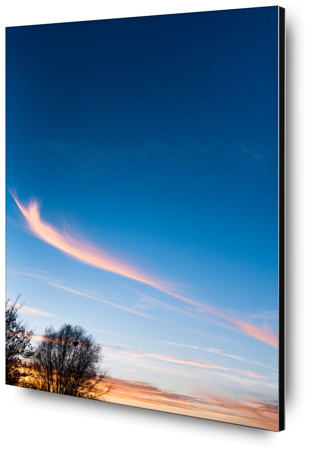 Voyage au pays des rêves from Marie Guibouin, Prodi Art, sky, clouds, nature, trees, marie guibouin, sunset