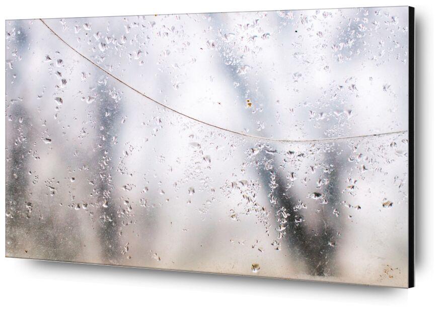 Derrière le voile des apparences de Marie Guibouin, Prodi Art, pluie, marie guibouin, vitre, eau, gouttes d'eau, forêt, arbres, nature