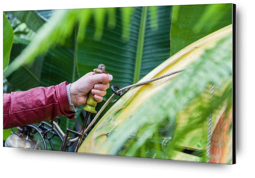 Let's go hand ! de Marie Guibouin, Prodi Art, mécanique, serre tropicale, nantes, machines de l'ile, plante, vert, marie guibouin, main