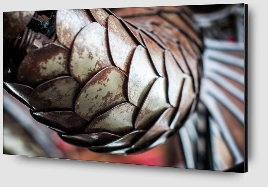 Ecailles de dragon - carrousel des mondes marins de Marie Guibouin Zoom Alu Dibond Image