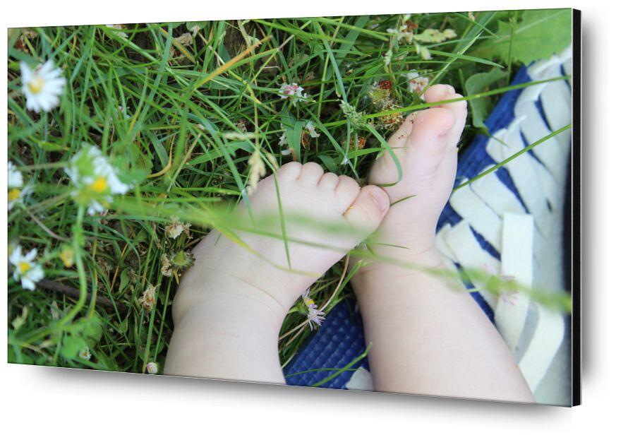 Petits pieds dans l'herbe de jenny buniet, Prodi Art, nature, bébé