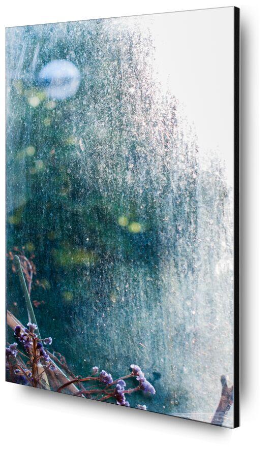 Bulle de lumière de Marie Guibouin, Prodi Art, lumière, automne, fenêtre, plantes, fleurs, violet, vert, bulle, marie guibouin, violette