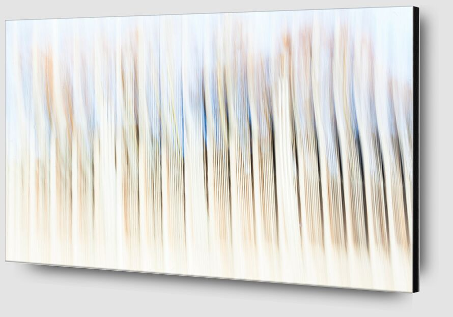 Barrodé de Julien Replat Zoom Alu Dibond Image