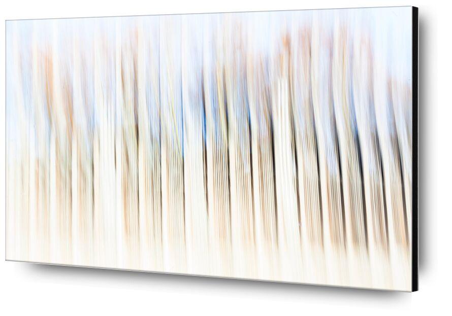 Barrodé de Julien Replat, Prodi Art, abstrait, flou, Photographie, conception