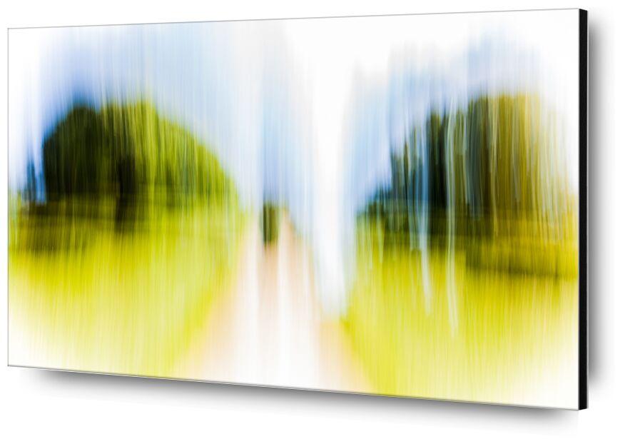 Entre Deux de Julien Replat, Prodi Art, nature, conception, flou, abstrait