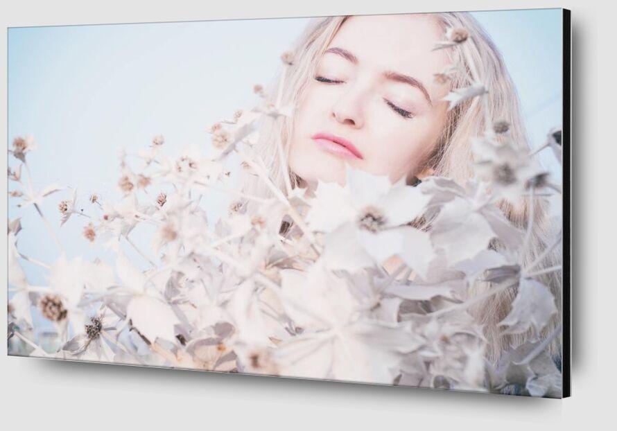 Dreaming tenderness from Pierre Gaultier Zoom Alu Dibond Image