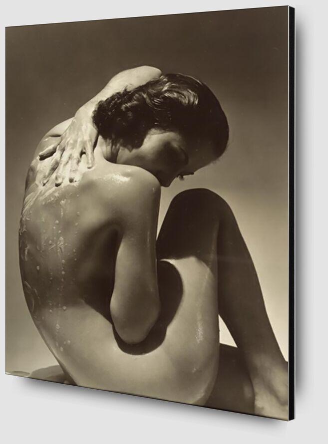 Back - Edward Steichen 1923 from Aux Beaux-Arts Zoom Alu Dibond Image
