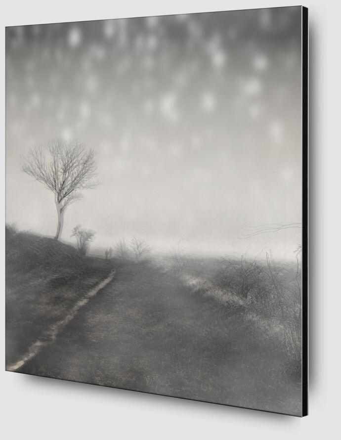 The winter path from Adam da Silva Zoom Alu Dibond Image