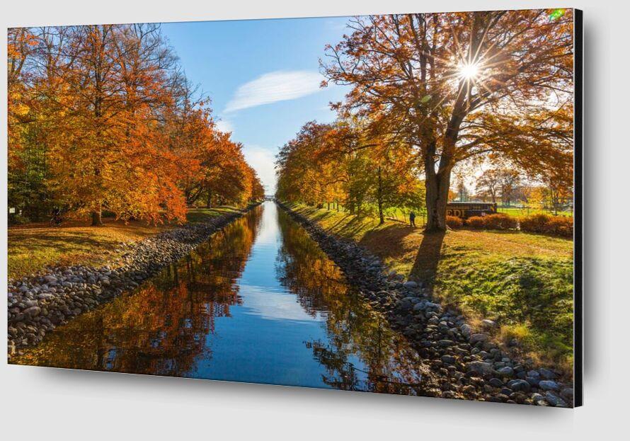 Glare from Aliss ART Zoom Alu Dibond Image