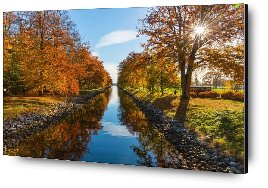 Glare from Aliss ART, Prodi Art, pebbles, water, trees, sun glare, stones, scenic, River, park, outdoors, nature, channel