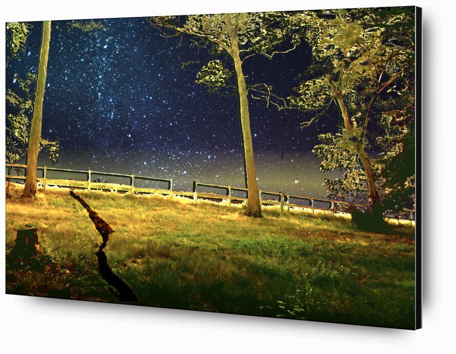 La porte de Adam da Silva, Prodi Art, nuit, étoiles, arbres, prairie, bleu