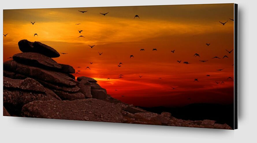Flying to the Sunset from Pierre Gaultier Zoom Alu Dibond Image