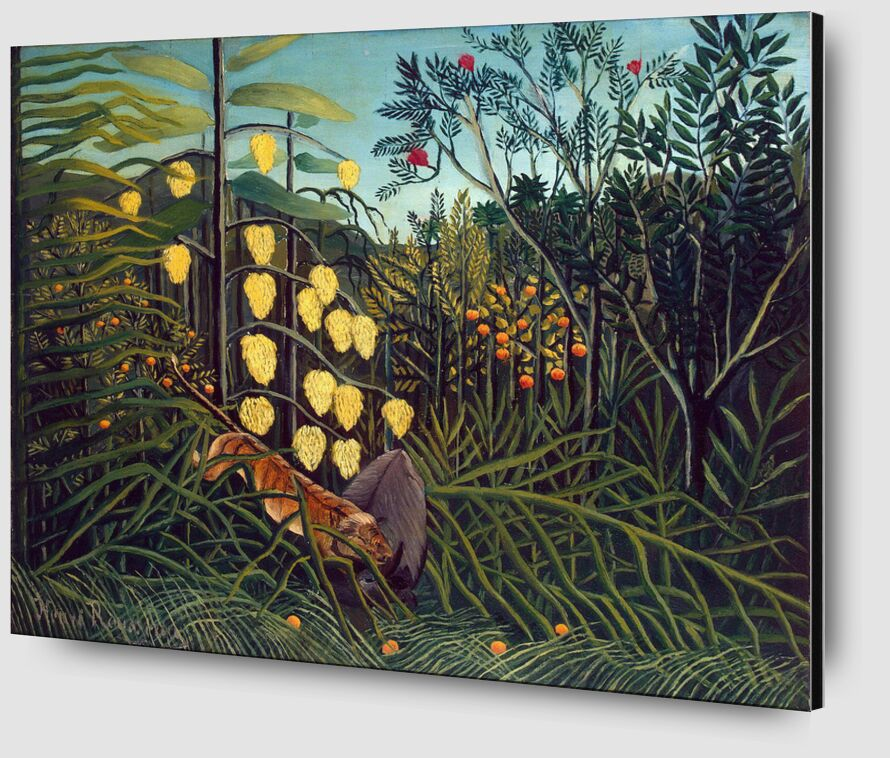 Tropical Forest: Battling Tiger and Buffalo from AUX BEAUX-ARTS Zoom Alu Dibond Image