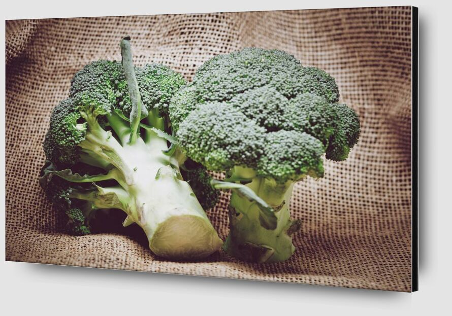 Broccoli from Pierre Gaultier Zoom Alu Dibond Image