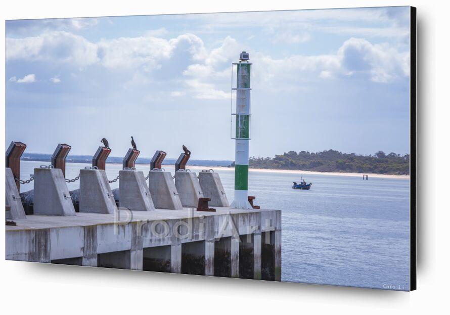 Embarcadère de Caro Li, Prodi Art, océan, mer, mer, paysage, paysage, bateau, embarcadère