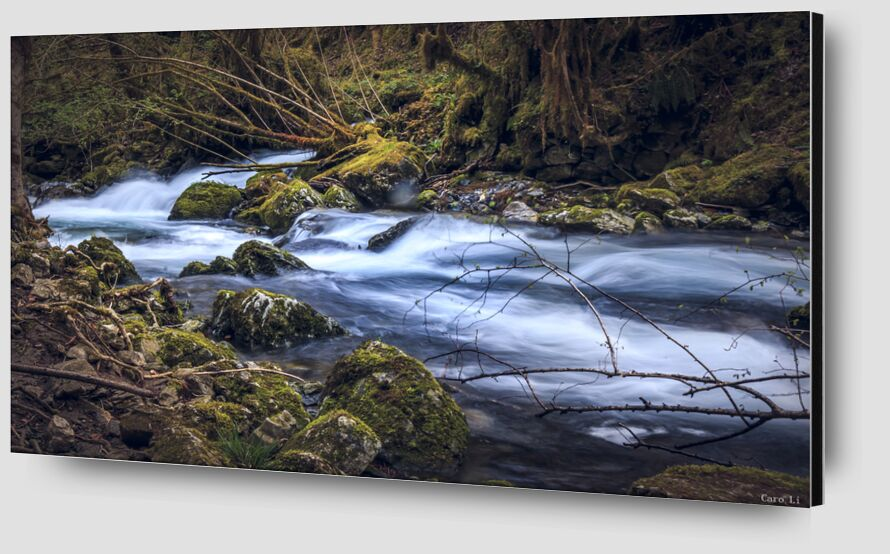 The river de Caro Li Zoom Alu Dibond Image