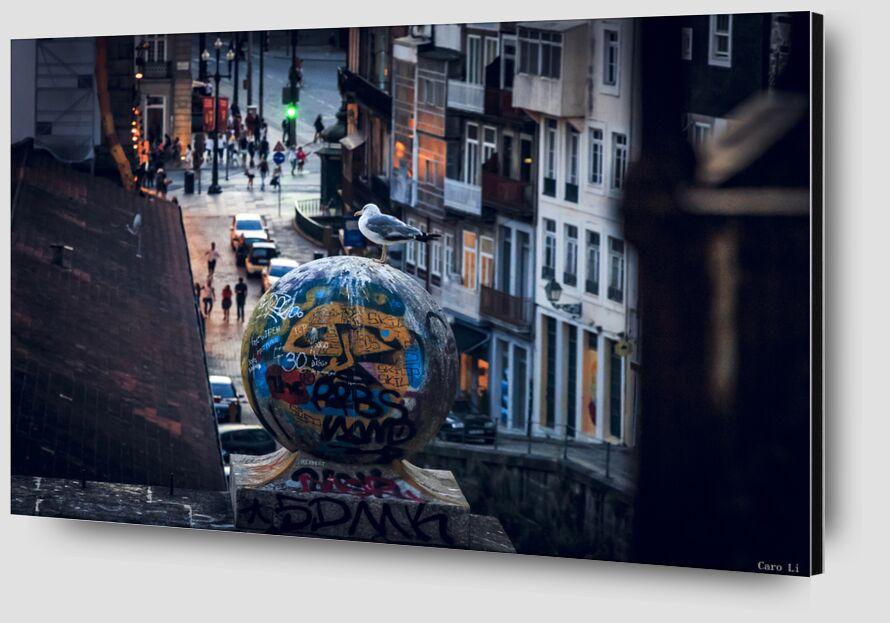 The Street de Caro Li Zoom Alu Dibond Image