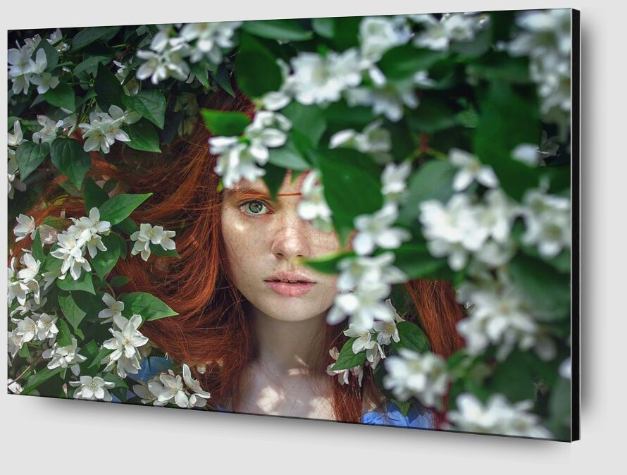 Behind the flowers from Pierre Gaultier Zoom Alu Dibond Image