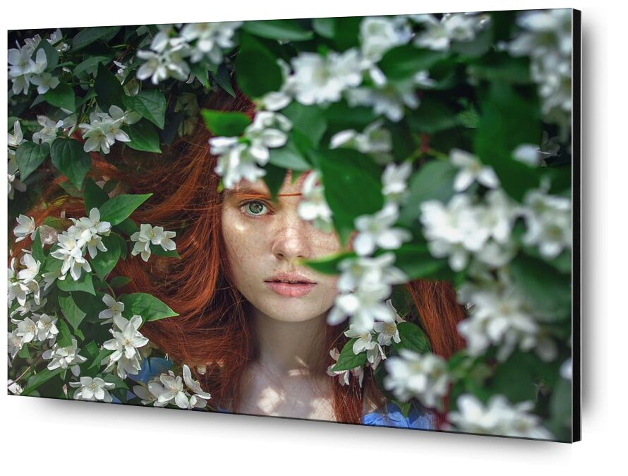 Behind the flowers from Pierre Gaultier, Prodi Art, art, attractive, beautiful, beauty, creative, face, female, flora, flowers, girl, model, outdoors, person, photoshoot, pretty, woman