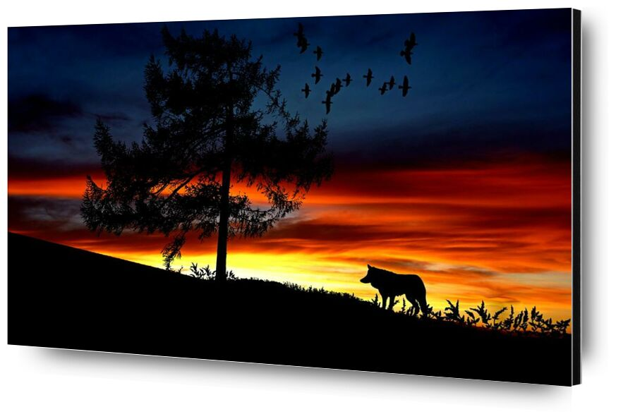 En attente from Aliss ART, Prodi Art, animal, backlit, clouds, colorful, dawn, desert, dusk, evening, landscape, lighting, outdoors, silhouette, sunrise, sunset, tree, wolf, afterglow, Dark Sky, flock of birds