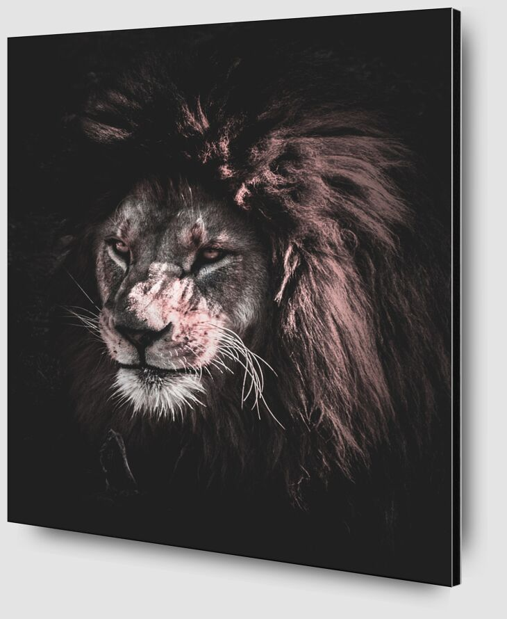 King of nature from Aliss ART Zoom Alu Dibond Image