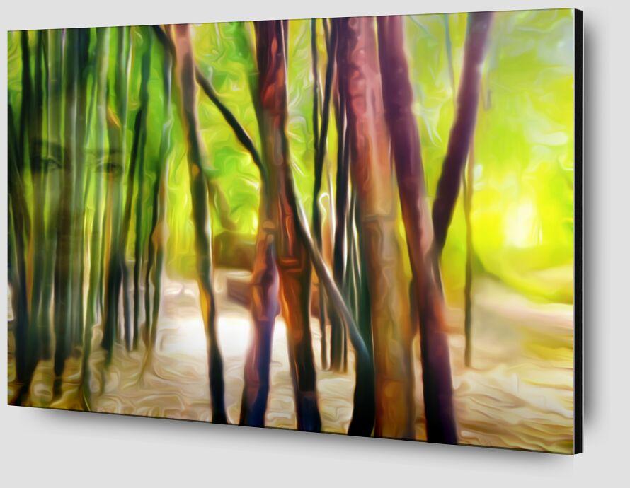 Derrière les bambous de Adam da Silva Zoom Alu Dibond Image