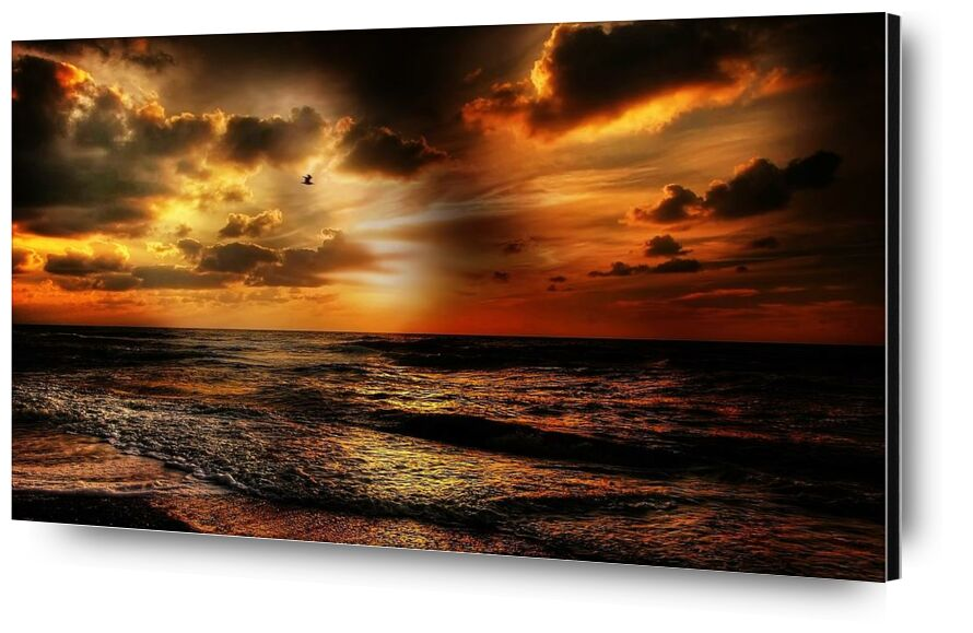 Intense light from Pierre Gaultier, Prodi Art, beach, beautiful, bird, clouds, dawn, gold, landscape, nature, ocean, outdoors, reflection, sand, sea, seascape, seashore, sky, Sun, sunlight, sunset, water, cloud formation, coast, sand beach, seafoam, sunbeam, waves