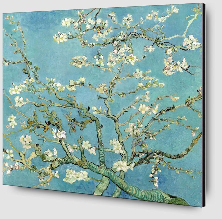 Branches d'amandier en fleurs, Saint-Rémy - VINCENT VAN GOGH 1890 de Aux Beaux-Arts Zoom Alu Dibond Image