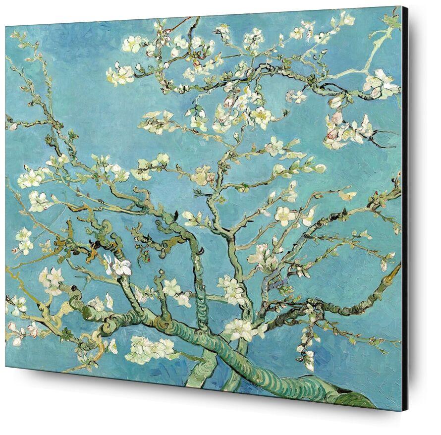 Almond Blossom, Saint-Rémy - VINCENT VAN GOGH 1890 desde AUX BEAUX-ARTS, Prodi Art, árbol floreciente, VINCENT VAN GOGH, naturaleza, flores, rama, árbol, pintura