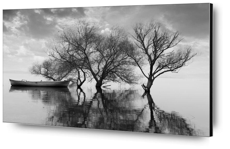 Le bateau et son attache - Ansel Adams 1942 de AUX BEAUX-ARTS, Prodi Art, bateau, arbre, Lac, noir et blanc, nuages, ciel, ANSEL ADAMS, barque, infini