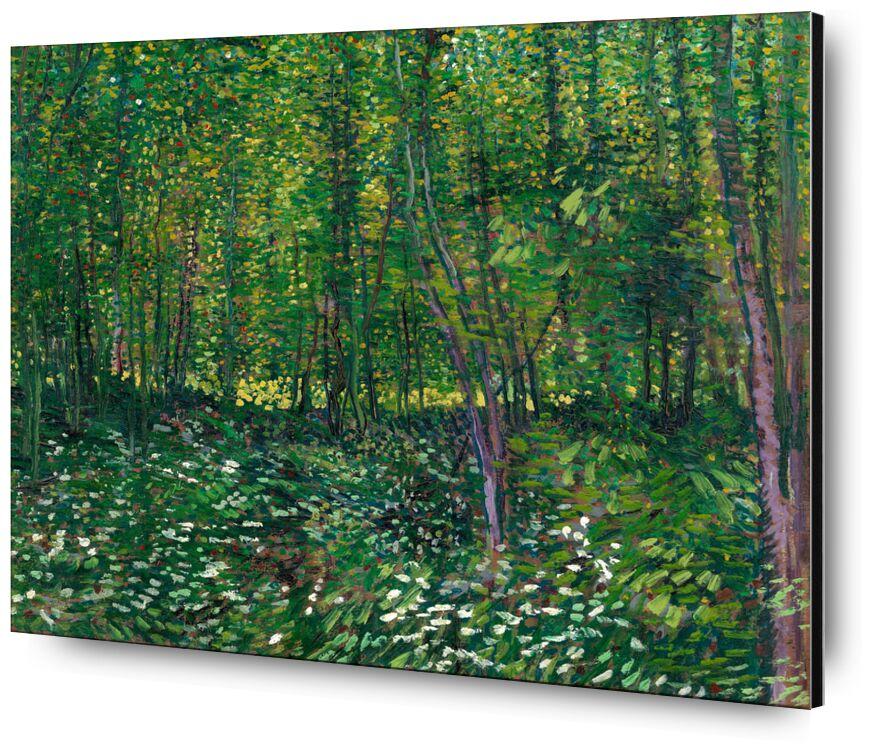 Trees and undergrowth - VINCENT VAN GOGH 1887 desde AUX BEAUX-ARTS, Prodi Art, maleza, VINCENT VAN GOGH, pintura, flores, árboles, bosque, verde, naturaleza, madera