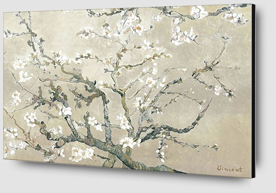 Almond Branches in Bloom, San Remy - VINCENT VAN GOGH 1890 from AUX BEAUX-ARTS Zoom Alu Dibond Image