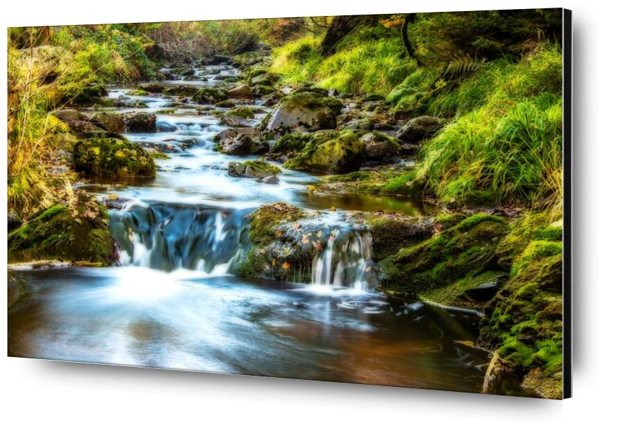 Splendeur profonde from Aliss ART, Prodi Art, rapids, flowing, cascade, trees, stream, stones, rocks, River, outdoors, nature, motion, leaves, landscape, flow, environment, creek, cascade