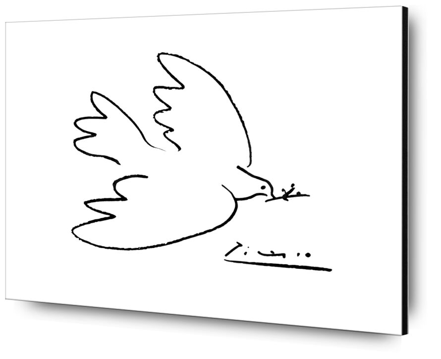 Dove of peace - PABLO PICASSO from AUX BEAUX-ARTS, Prodi Art, PABLO PICASSO, pencil drawing, dove, drawing
