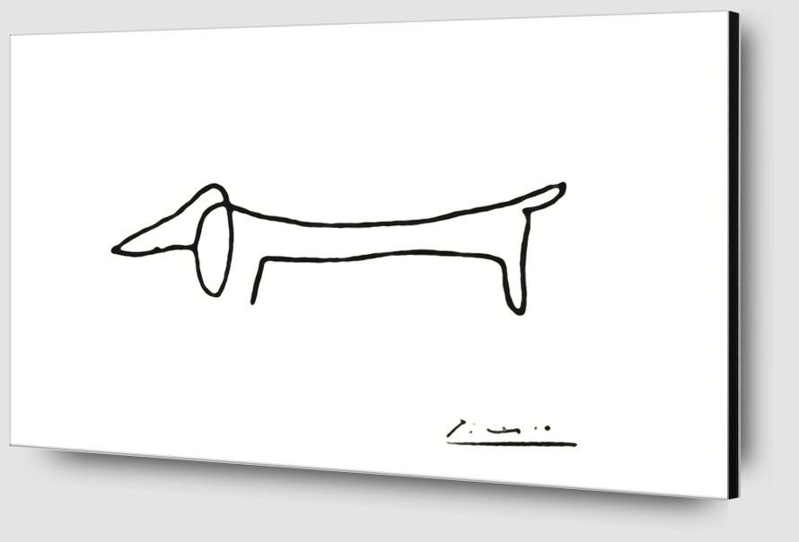 Le chien - PABLO PICASSO de Aux Beaux-Arts Zoom Alu Dibond Image