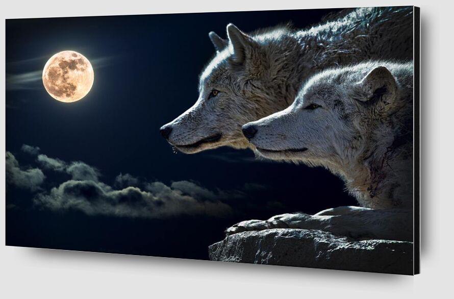 Les gardiens de la nuit from Aliss ART Zoom Alu Dibond Image