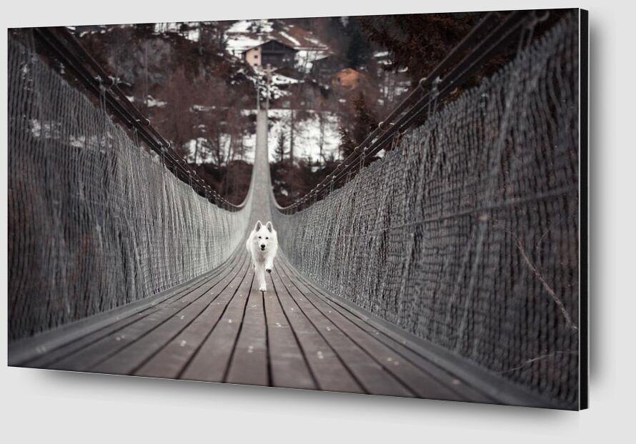 Passage from Aliss ART Zoom Alu Dibond Image