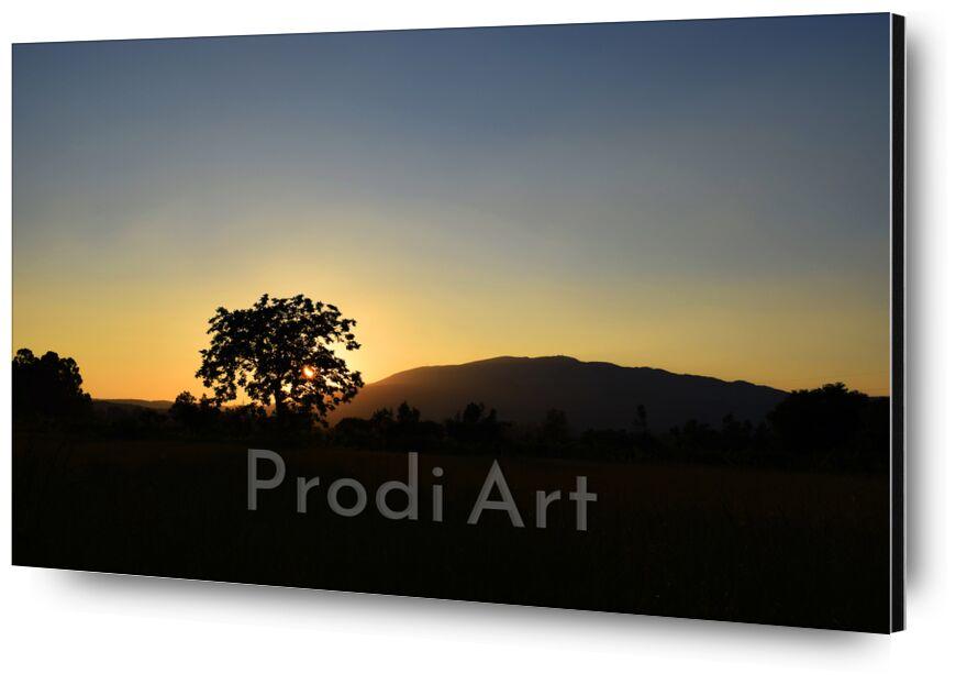 coucher de soleil de ivephotography, Prodi Art, coucher de soleil, soleil, nature