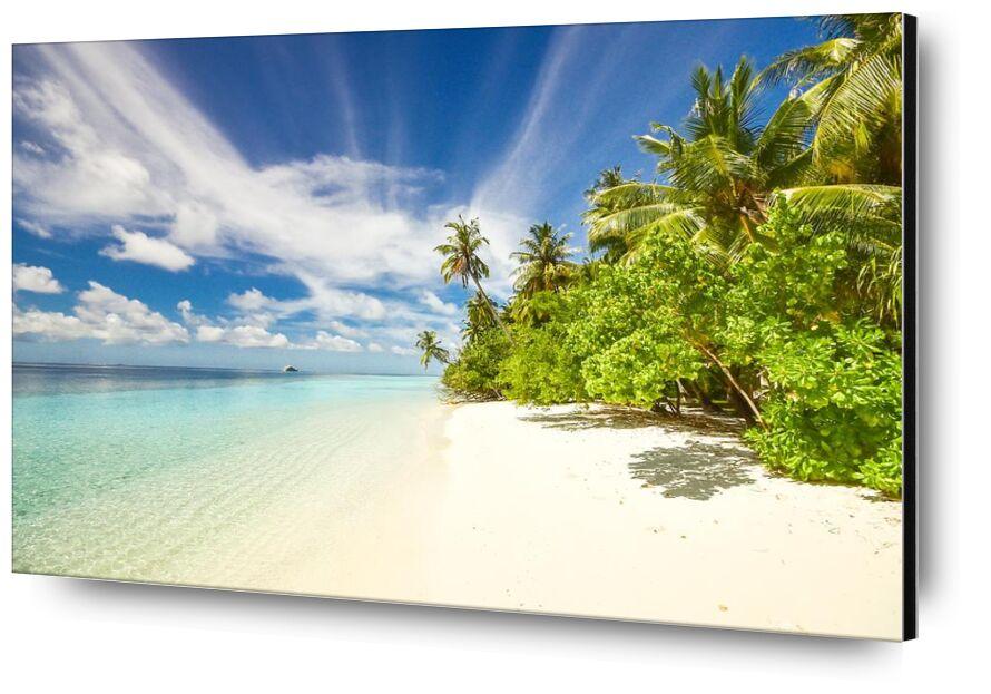 Island from Aliss ART, Prodi Art, beach, calm, clouds, exotic, idyllic, island, ocean, peaceful, plants, quiet, sand, scenic, sea, seascape, seashore, shadow, sky, tranquil, trees, water, coconut trees, palm trees, resort